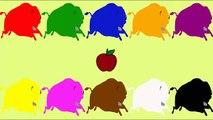 Las palomas Lindo animación de dibujos animados de Disfrutar de este hermoso educativas de dibujos animados donde Shawn El