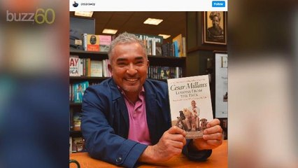 Cesar Millan Thinks Millennials Shouldn't Be Able to Adopt Dogs