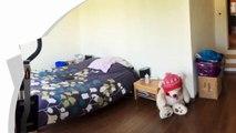 Vente maison - LE BLANC MESNIL (93150) - 98.0m²