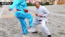 Ce maitre Kung Fu à les burnes en béton... Incroyable
