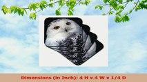 3dRose cst841164 Snowy Owl  NA02 MWE0133  Michele Westmorland  Ceramic Tile Coasters 19dbfe63