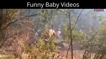 Funny Fails Try Not To Laugh Fu x323