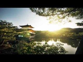 Beautifull Japanese Music - Japanese Instrumental Music | Relaxing Japanese Backgound Garden Music,