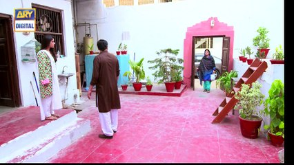 Watch Mere Humnawa Episode 24 - on Ary Digital in High Quality 25th February 2017