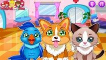 Little Pet Doctor - Puppys Rescue - Kids Learn To Take Care of Pets - Pet Care Kids Games