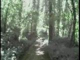 Le havre bois du colmoulin
