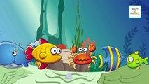 Tiburón Dedo de la Familia de la Canción | Animales marinos Dedo de la Familia y Más Rimas infantiles de la Colección Para