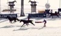Ski Joering : fun but extreme horse riding