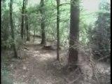 Le havre - Bois du colmoulin