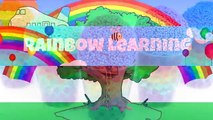 Kidschanel - Kids Toys P3 - Rainbow Orbeez and Foam Clay Surprise Cups MLP LPS RainbowLear