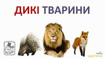 Salvajes, mascotas y animales de compañía. Desarrolla de animación para niños
