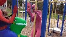 Spider Man and Spider Girl RACE! T-REX Unicorn Shark Bad Joker In Fun Playground Video Com