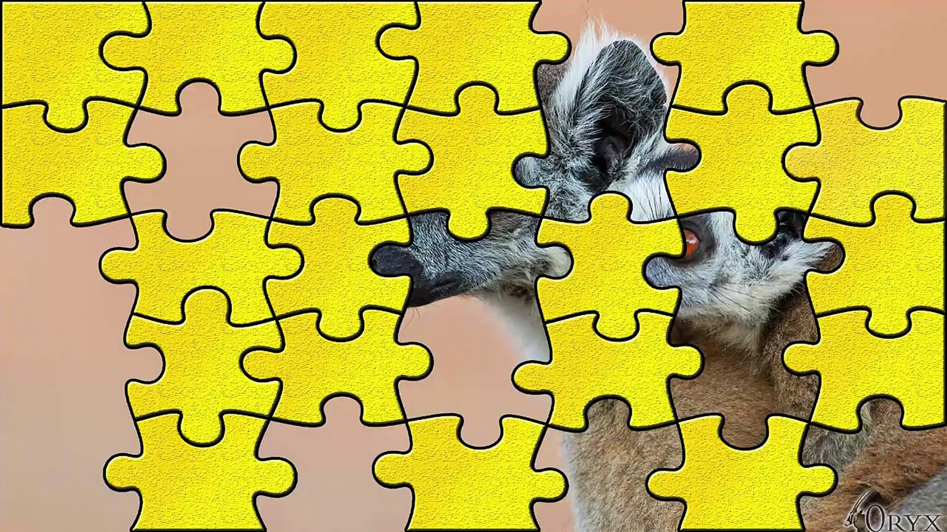 384 Puzzles for Preschool Kids Puzzle Education Games Android Video