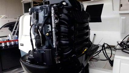 Hors-Bord Suzuki DF150 T et DF150 AP : quelle différence ?
