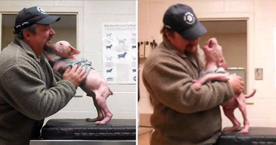 Man returns to adopt the dog he rescued, and the surprised pup couldn't be happier
