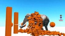 APRENDER los COLORES de la Diversión de Elefantes de Colores | Preescolar y niños pequeños Aprender los Colores Rima de cuarto de niños