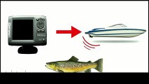 Kayak fish Finder | How Does a Fish Finders Work