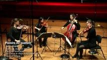 Dvorak : Echos de chants B 152 - X. Tam stojí stará skála - Quatuor Akilone