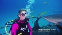 Bahamas Shark Feeding Frenzy on the Ray of Hope Shipwreck