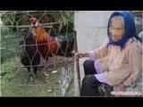 Mẹ già lặn lội xách gà lên cho con dâu, đến lúc gà chết, mẹ lả đi bên đường con dâu vẫn…