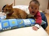 Un bébé qui joue avec la queue de son chat !
