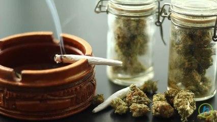 Increase of Older Americans Engaging in Marijuana Use