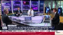 Hervé Goulletquer VS Eric Bertrand (1/2): Les incertitudes politiques empiètent-elles sur les marchés? - 02/03