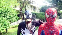 Человек-паук увидел гигантского Паука! Джокер Против Халк Против Венома Против Желтой Паук Супергерои Дейс