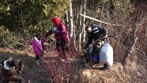 On the trail of the migrants escaping the US for Canada