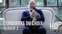 L'embarras du choix - Teaser 3 (Alexandra Lamy, Arnaud Ducret, Jamie Bamber) [Full HD,1920x1080]