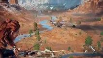 PS4live (Horizon Zero Dawn) (25)