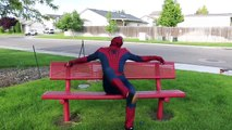 Spiderman and Blue Spiderman   In Real Life!!   Spiderman Goes Skateboarding  