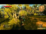 Gaming Live - The Witcher 3 : Wild Hunt - Les graphismes d'un monde ouvert 3/4