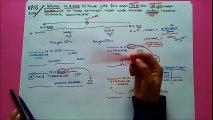7) 102 BANKALAR (Hesap Açma, Kapatma, Faiz Tahakkuku ve Yabancı Paralı Hesap Açma)