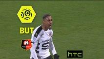 But Wesley SAID (90ème) / FC Metz - Stade Rennais FC - (1-1) - (FCM-SRFC) / 2016-17