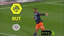 But Steve MOUNIE (50ème) / Montpellier Hérault SC - EA Guingamp - (1-1) - (MHSC-EAG) / 2016-17