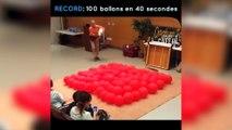 Record du monde: ce chien éclate 100 ballons en moins de 40 secondes!