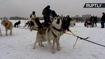 Russian Iditarod? 96-Mile Dog Sled Race Kicks Off on Frozen Lake Baikal