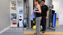 Shoulder Impingement Pain?  Scapula Muscle Strengthening and Activation