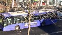 VanHool NewA330 Fil Bleu N°260