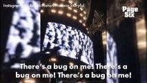 Quand Adèle pète un câble contre deux moustiques en plein concert