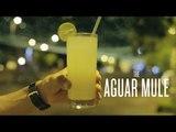 Curbside Cocktails: Cartagena, AGUAR MULE - Liquor.com