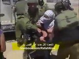 human rights violation in Palestine