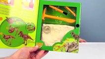 Las excavaciones de dinosaurios Тиранозавра desembalaje de juguetes Geoworld dino-excavaciones : el Esqueleto de Ti-rex