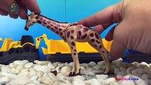 16 Baby Wild Animals Kids Zoo Toys Elephant Rhino Giraffe Tiger Tapir Toy Animals and Fun