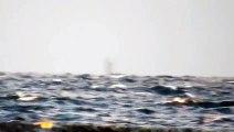 Il filme un objet mystérieux au large de la cote californienne... OVNI?