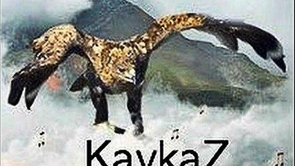 What is Daryal - to the origins of wildlife