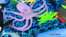 ANIMAL PLANET MEGA OCEAN TUB SHARKS DOLPHINS TURTLES SEAHORSE STARFISH OCTOPUS WHALE CRAB - UNBOXING-xw7X-z
