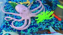 ANIMAL PLANET MEGA OCEAN TUB SHARKS DOLPHINS TURTLES SEAHORSE STARFISH OCTOPUS WHALE CRAB - UNBOXING-xw7X-zc