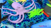 ANIMAL PLANET MEGA OCEAN TUB SHARKS DOLPHINS TURTLES SEAHORSE STARFISH OCTOPUS WHALE CRAB - UNBOXING-x